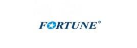 Fortune autógumi